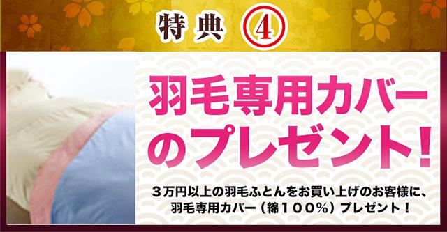 羽毛専用カバーのプレゼント!